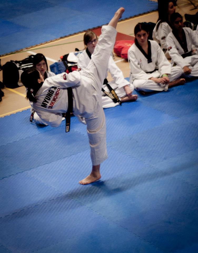 Taekwondo Side Kick im...