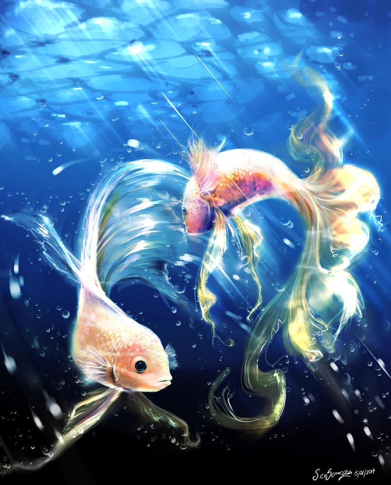 Fish dance by sersorroza