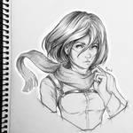 .: Mikasa :.