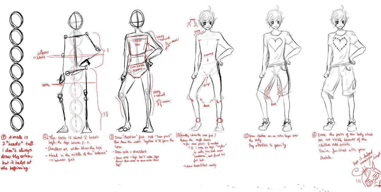 Tutorial male proportions by haneynozuka on deviantart tutorial male proportions by haneynozuka ccuart Gallery