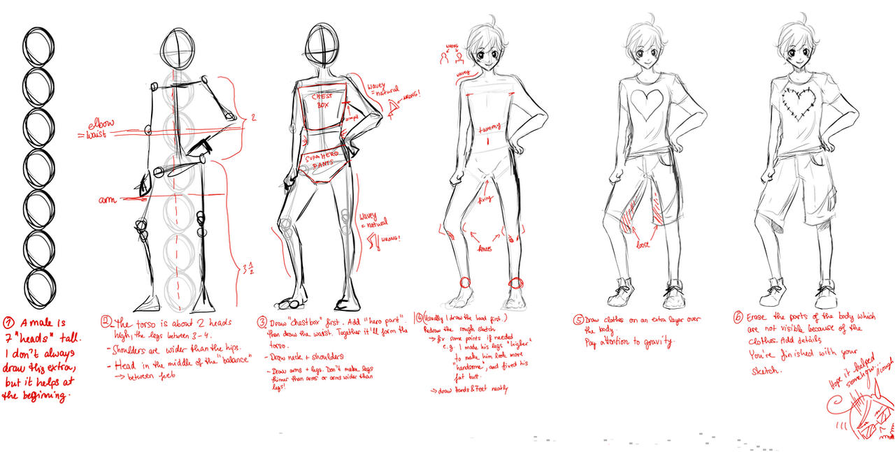 TUTORIAL: Male Proportions by Haneynozuka
