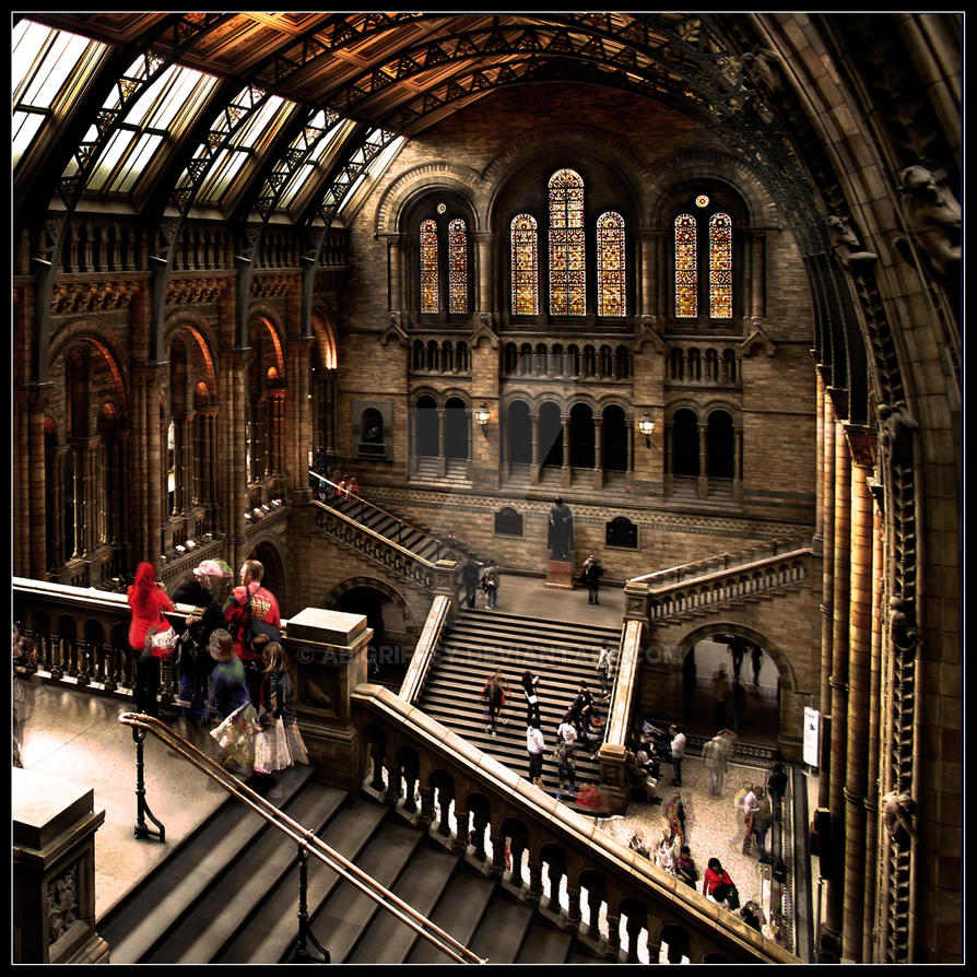 Natural History Museum by AbiGriffey