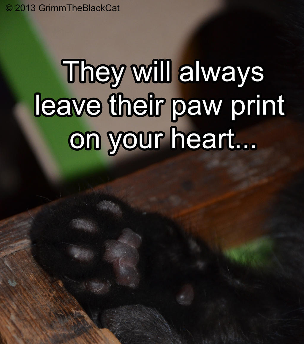 grimm_the_black_cat_meme___paw_print_by_tarsicius d6t921t grimm the black cat meme paw print by tarsicius on deviantart