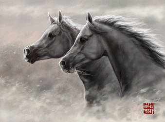 Two Horses by amie689