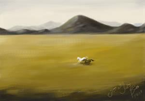Plains Horses