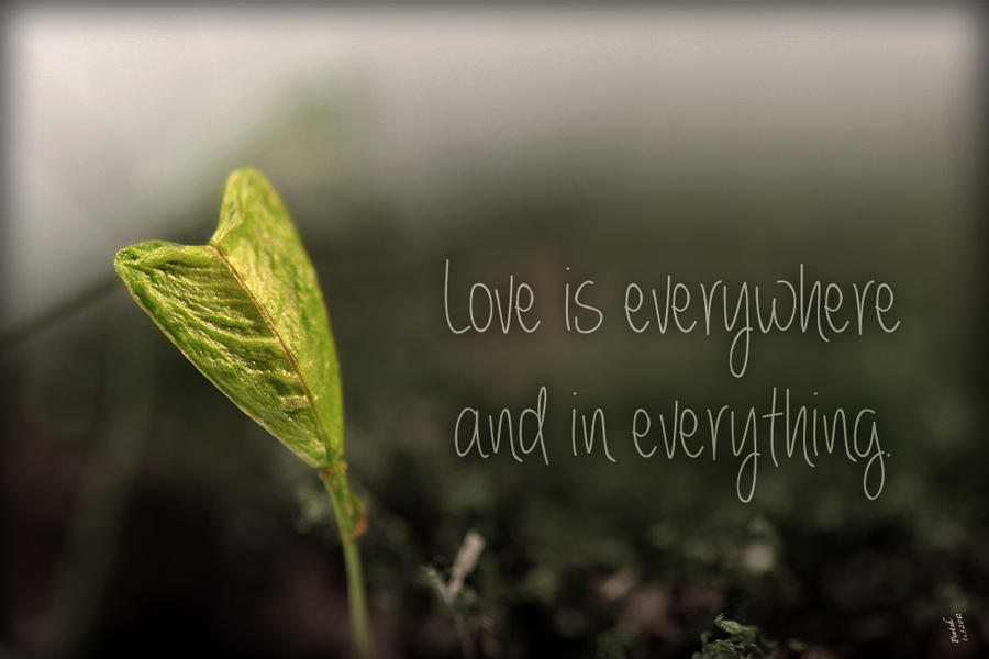 Love Is Everywhere And In Everything. By Penni2 On DeviantArt
