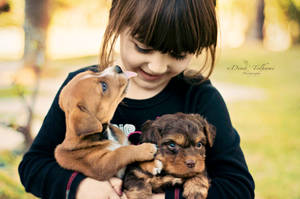 Puppy Love by Dina90T