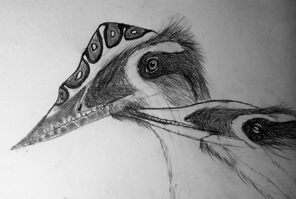 Germanodactylus:happy birthday! by IThinkOfaNameLater