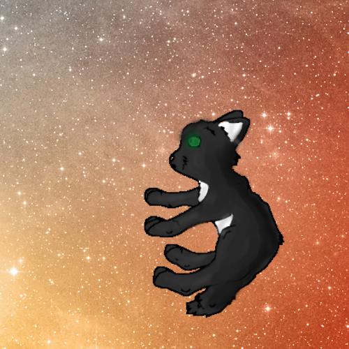 Star gazer by Official-Fallblossom