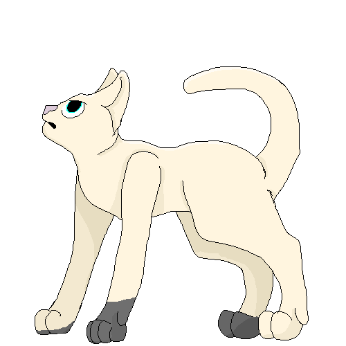 ThunderClan Warrior by Official-Fallblossom