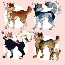 dog adopts - 4/4 open 200 points