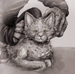 cat and old man