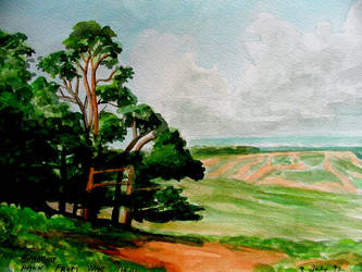 quick painting  of bradgate park leicestershire by humbersniper
