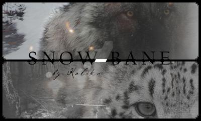 SnowBanebyKaliko by Just-A-Black-Sheep
