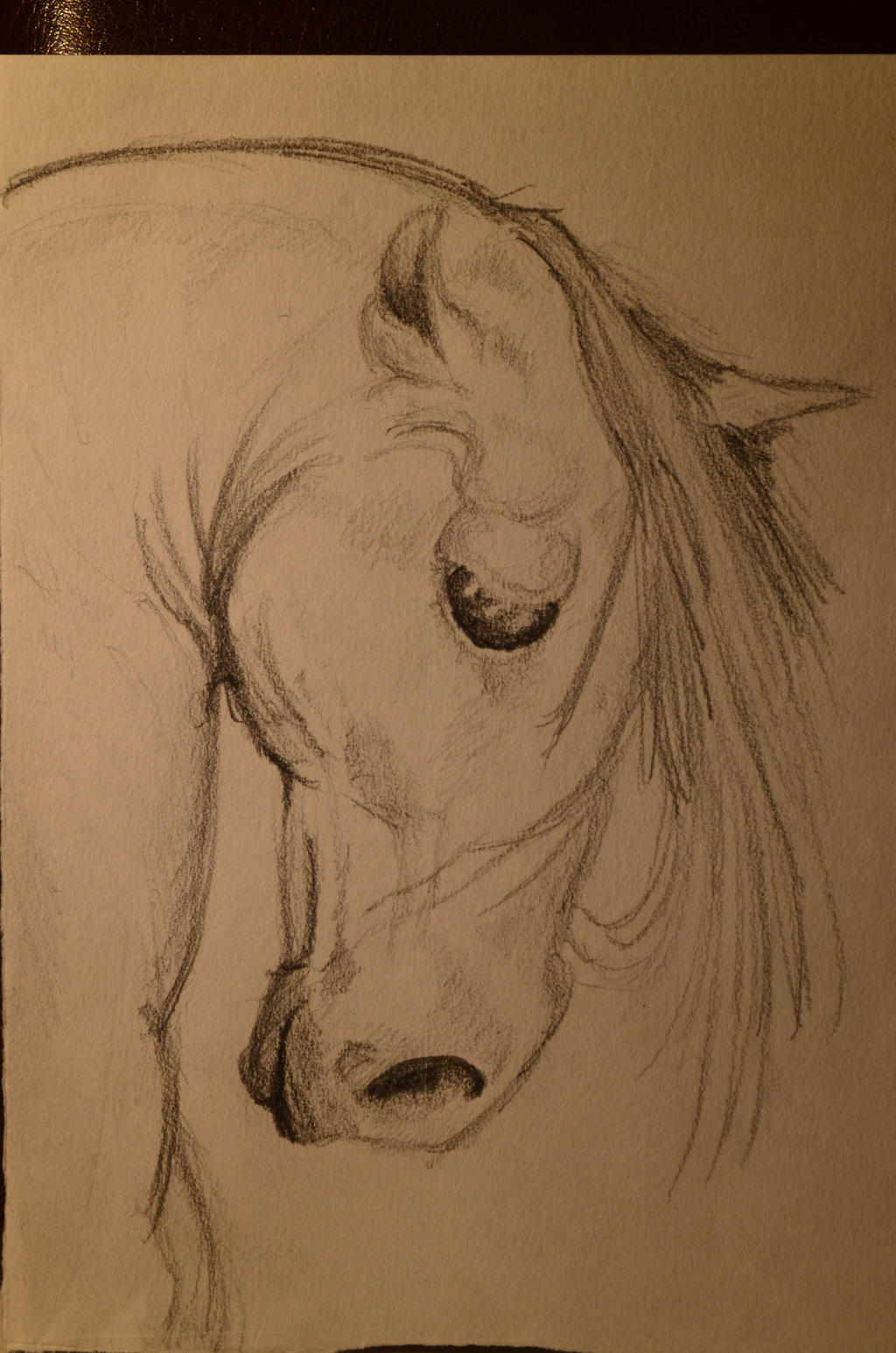 Horse by TheSuitedUnicorn