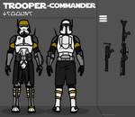 291st Legion Phase III Armor - Commander