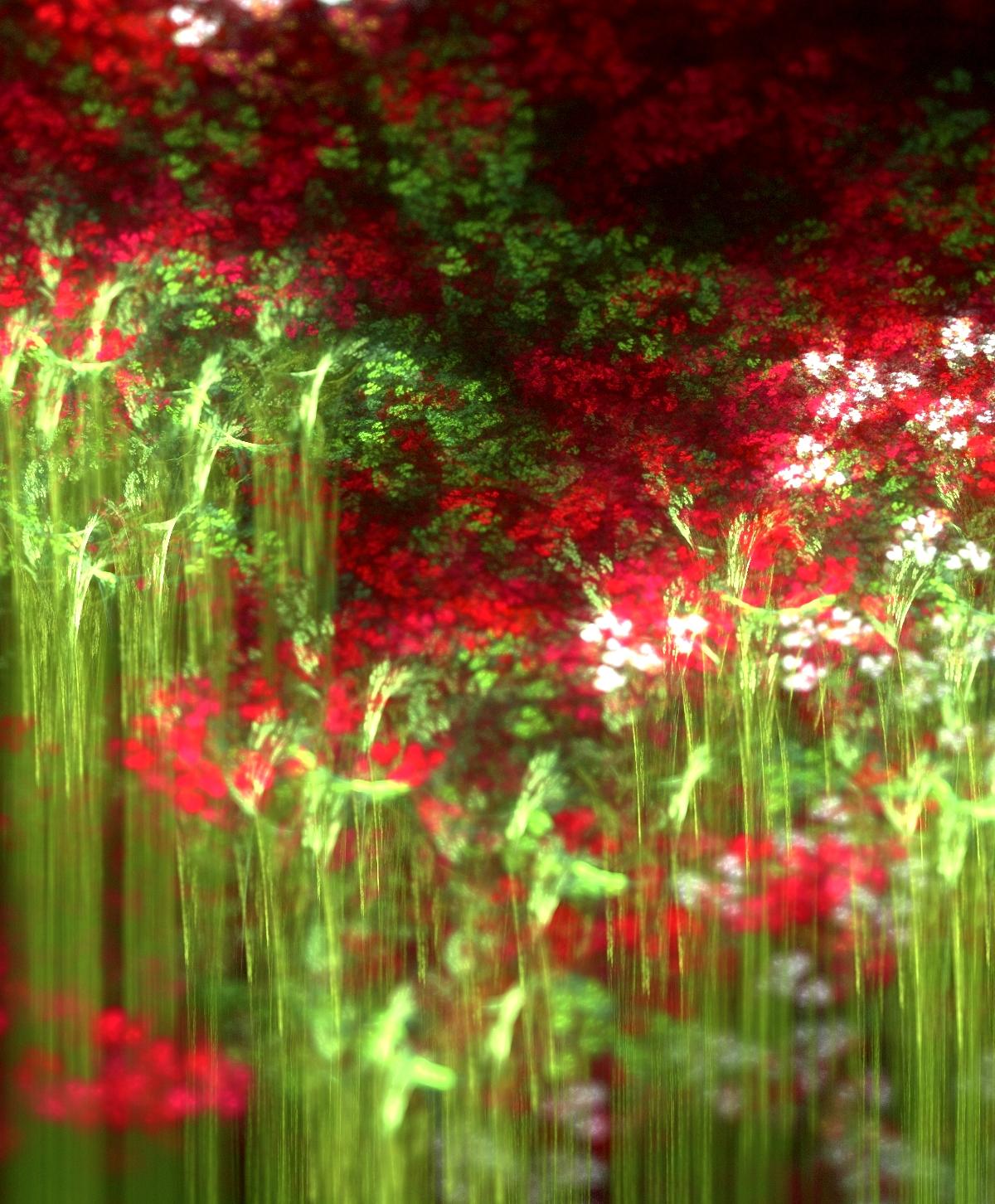 flowers by kimsmile