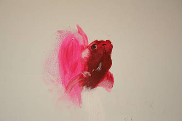 Pink Fish on a wall by fearyl