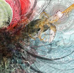 sealove - album 3 of 3