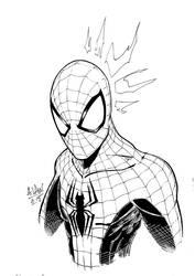 Spiderman by andrewlawart