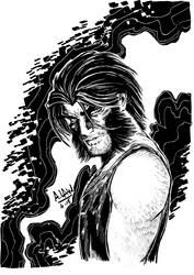 Wolverine by andrewlawart