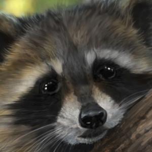 Binoched's Profile Picture
