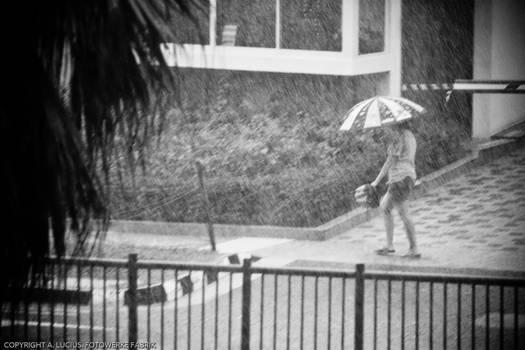 Braving the rain