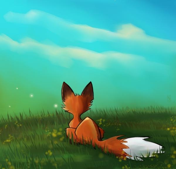 Fox Watching Lampwings