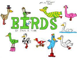Birds by Someonelikemyself