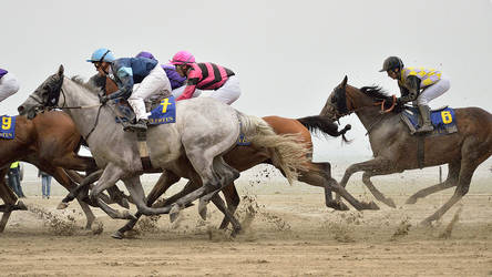 Horse Race by LuxLucie