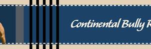 ContinentalBullyRegistry