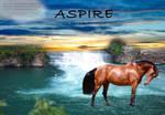 Aspire-Photo