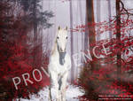 Foresthorse