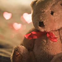 Teddy by m-ika