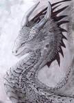 dragon dude