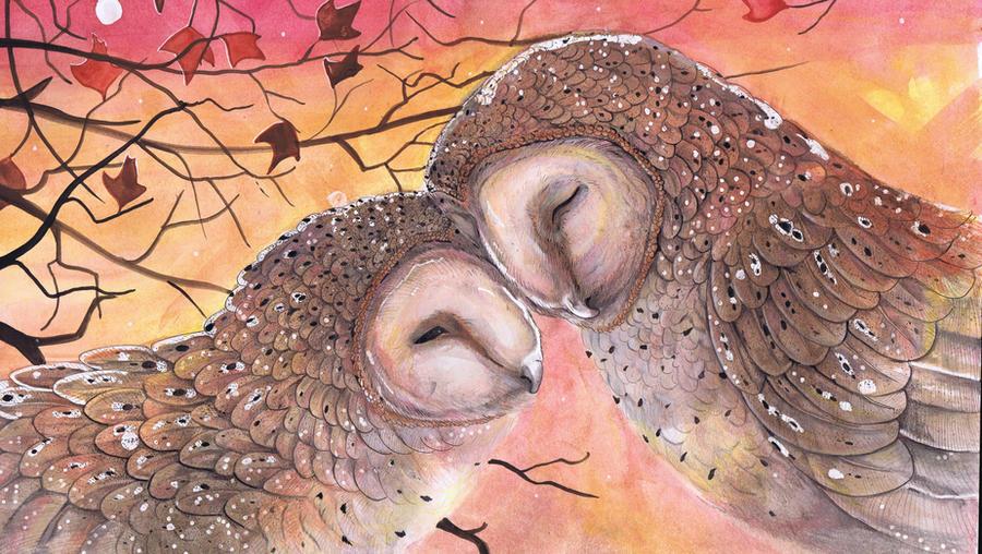 Barn Owl Cuddle by dawndelver