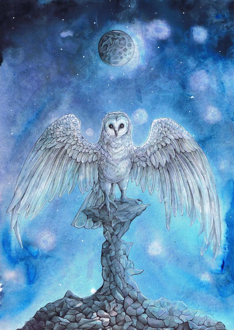 Owl Moon by dawndelver