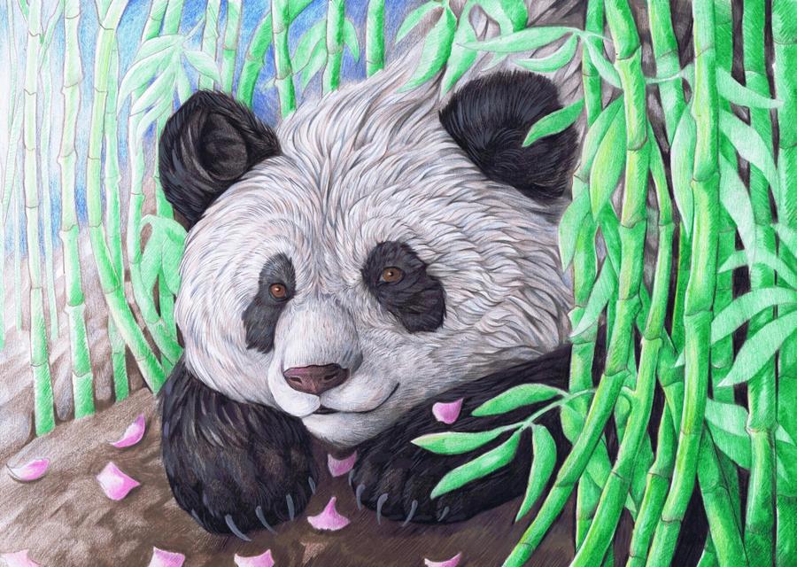 Happy Panda by dawndelver