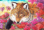 Fox in the Autumn Leaves