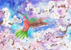 Humming Bird with White Blossom by dawndelver