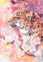 Leopard with Blossom by dawndelver