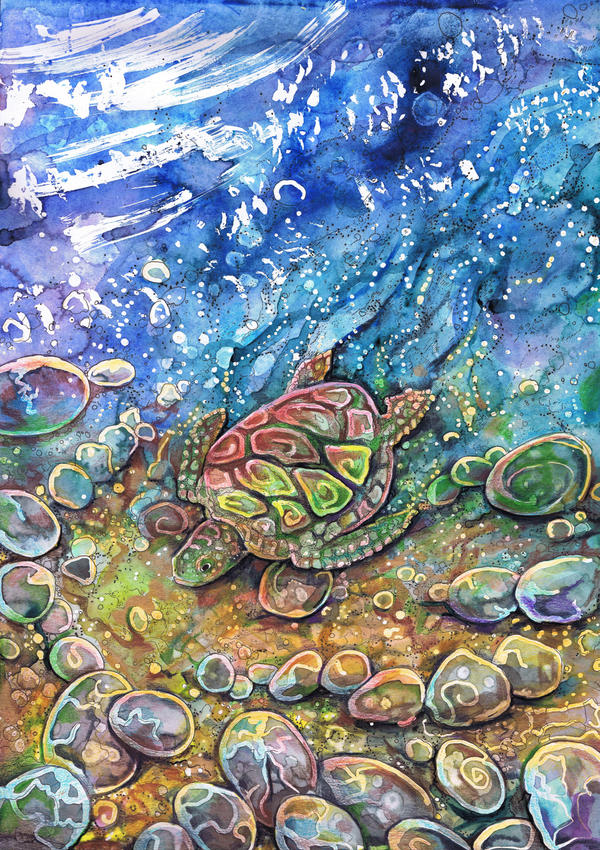 Little Turtle on Shore