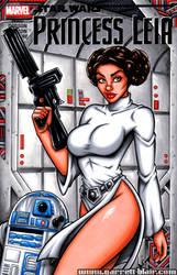 Princess Leia ANH sketch cover