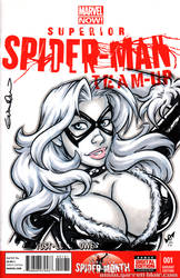 Black Cat bust Quick Sketch cover by gb2k