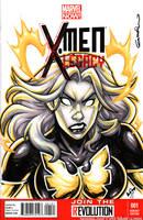 Dark Phoenix Quick Sketch cover by gb2k