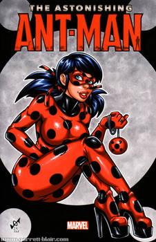 Ladybug sketch cover