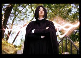 Severus Snape - Potion Master by LiquidNytrogen