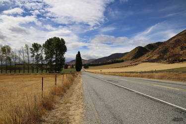 Somewhere in New Zealand II