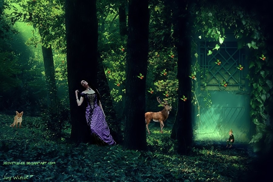 Forest Enchanted by JoyWitchLee