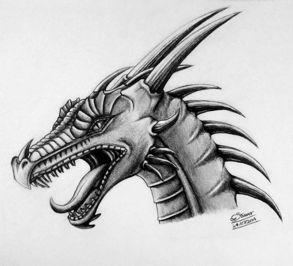 How To Draw A Dragon Head Dragon Head Drawing by...